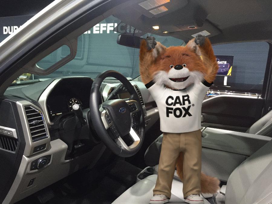 2015 Ford F-150 Grab Handle