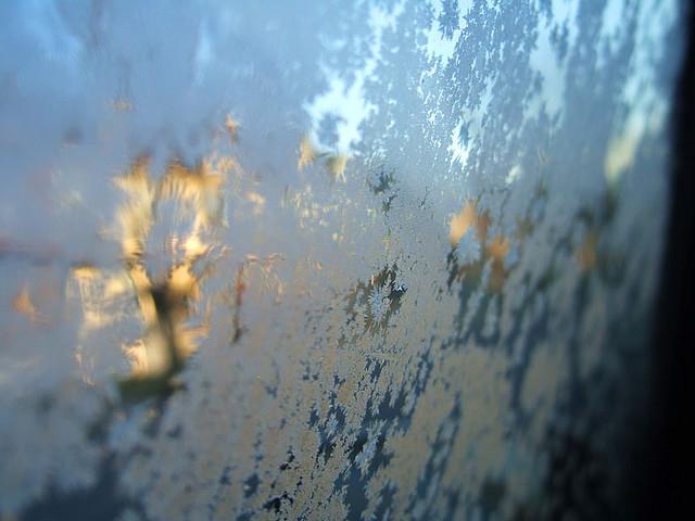 windshield-frost